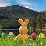 Toți cei care studiază în UK se pot întoarce acasă în vacanța de Paște