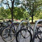 Un nou motiv de mândrie pentru universitățile din Marea Britanie: transport sustenabil